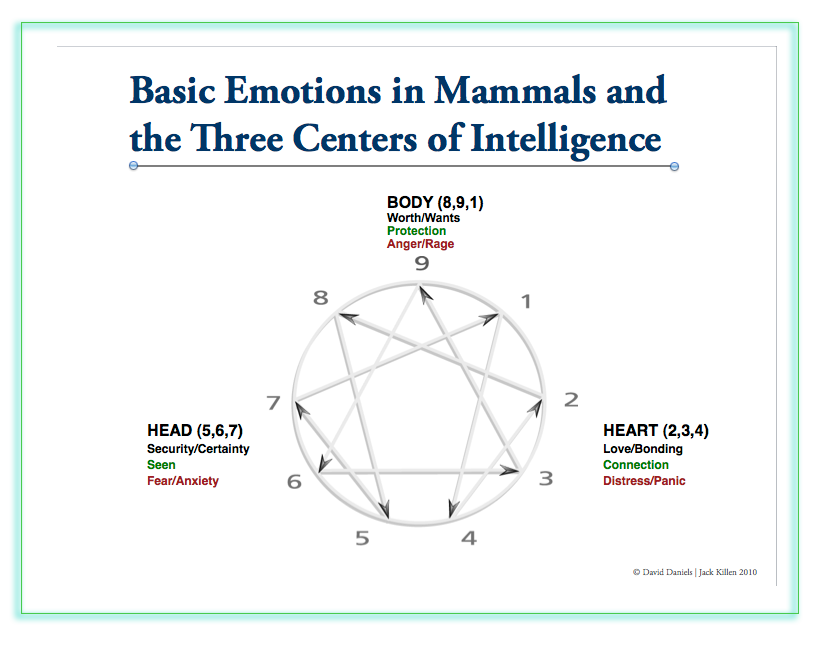 Three (3) Centers of Intelligence for the Enneagram Personality Types; Head, Heart, Gut; David Daniels explanation and advice; Find Your Type